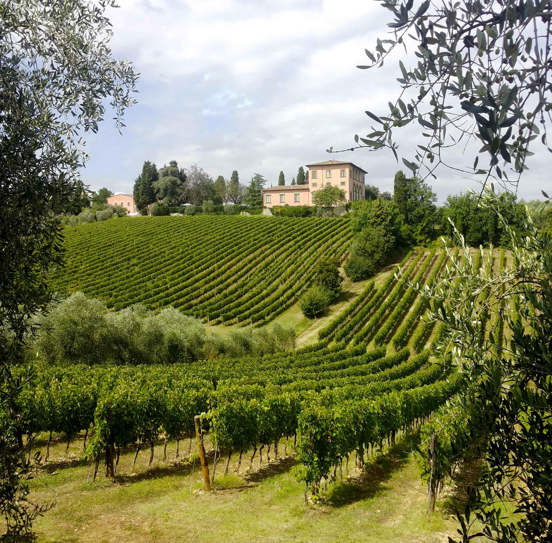 Villa Castelli Ragazza Violentata