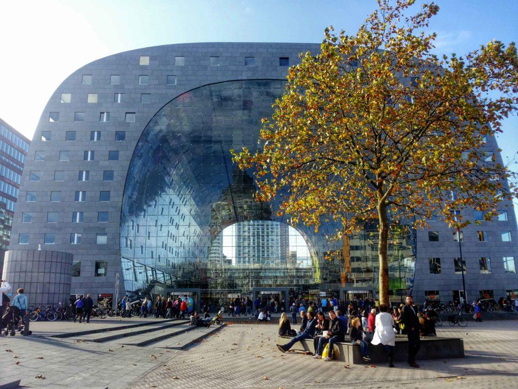 architettura mercato coperto di rotterdam