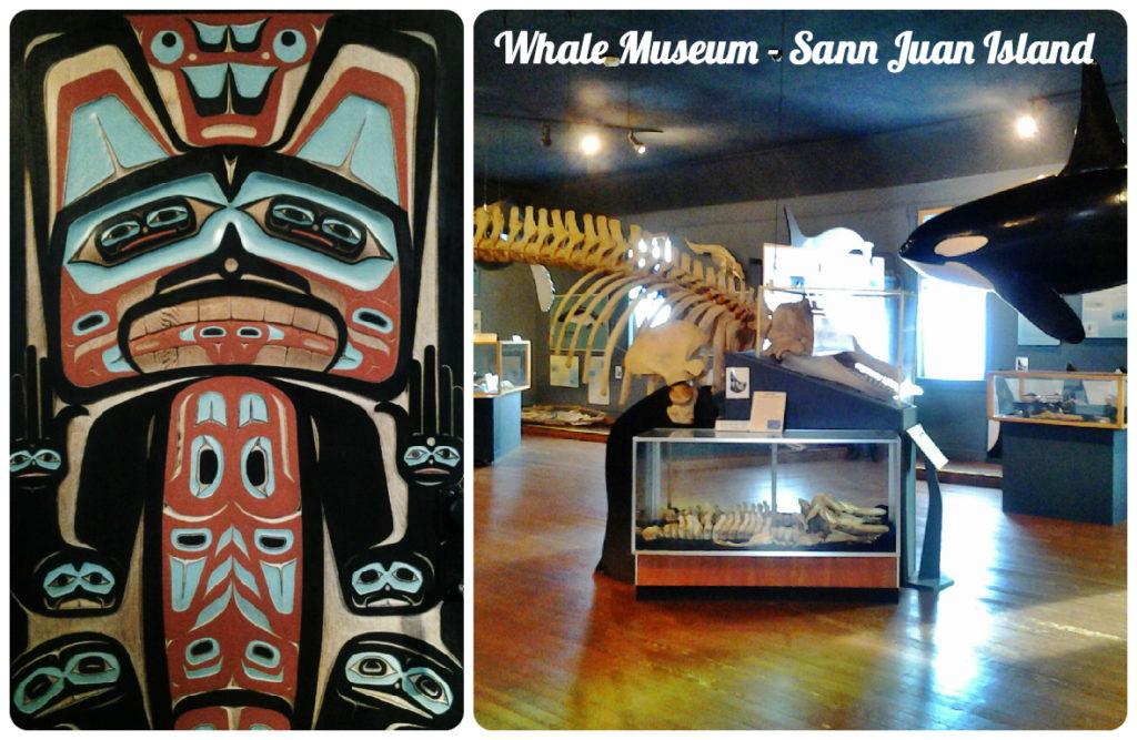 museo delle balene