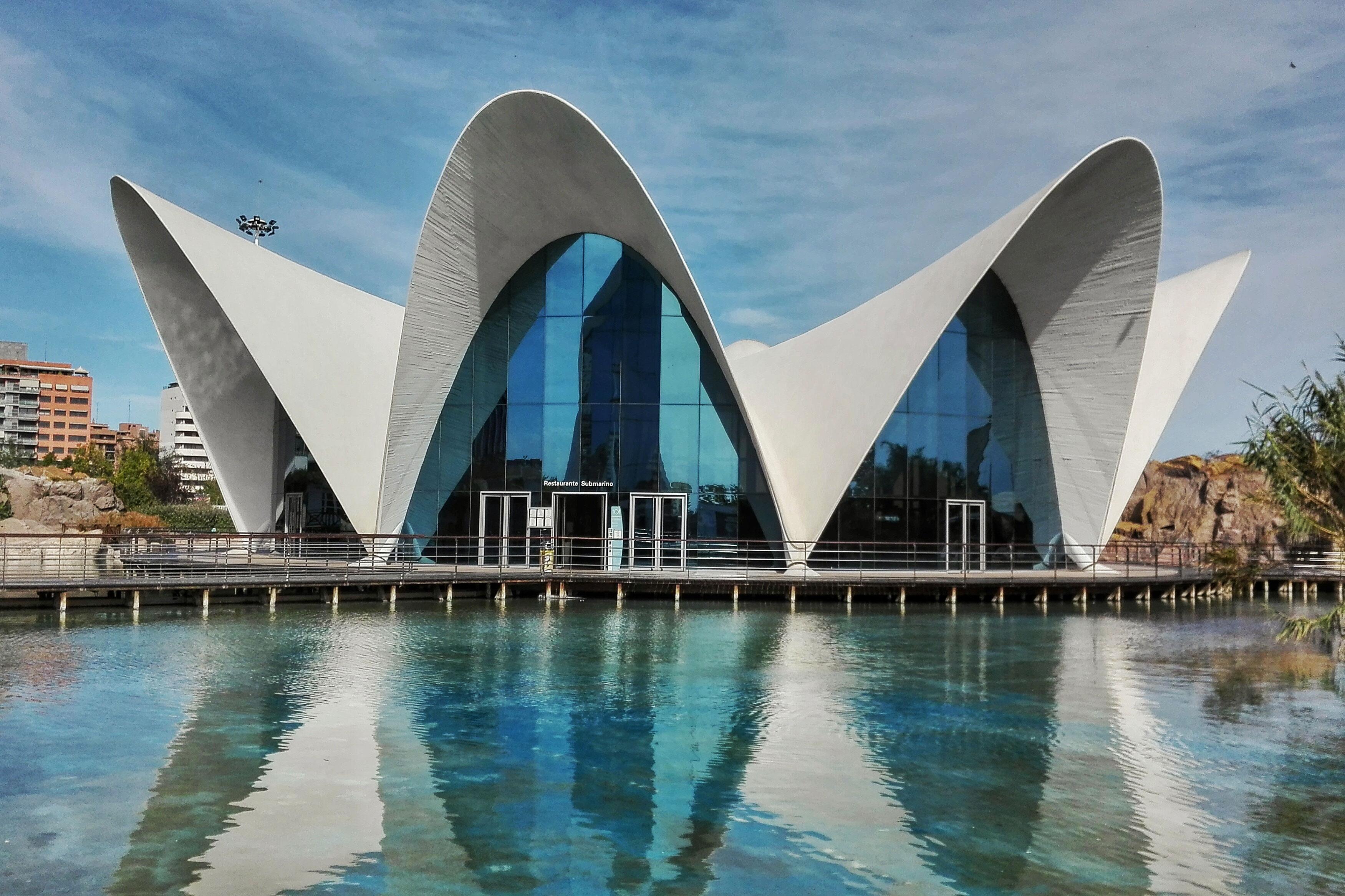 acquario-valencia-museo-oceanografico
