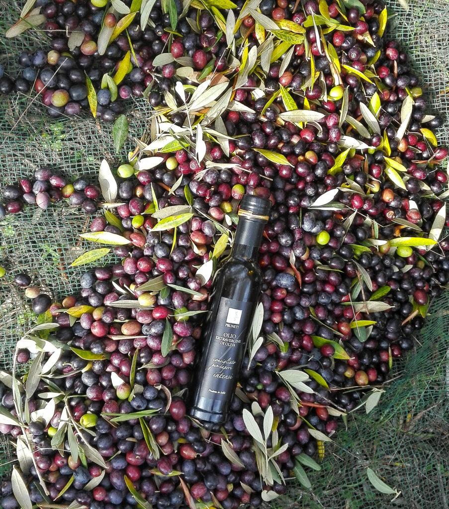 frantoio pruneti olio extravergine