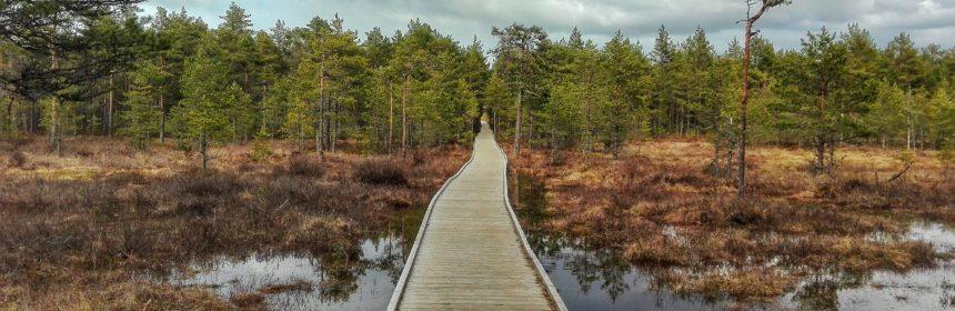 lahemaa national park