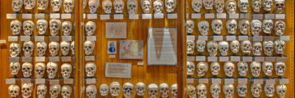 museo american horror story freak show