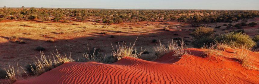 deserto del kalahari namibia