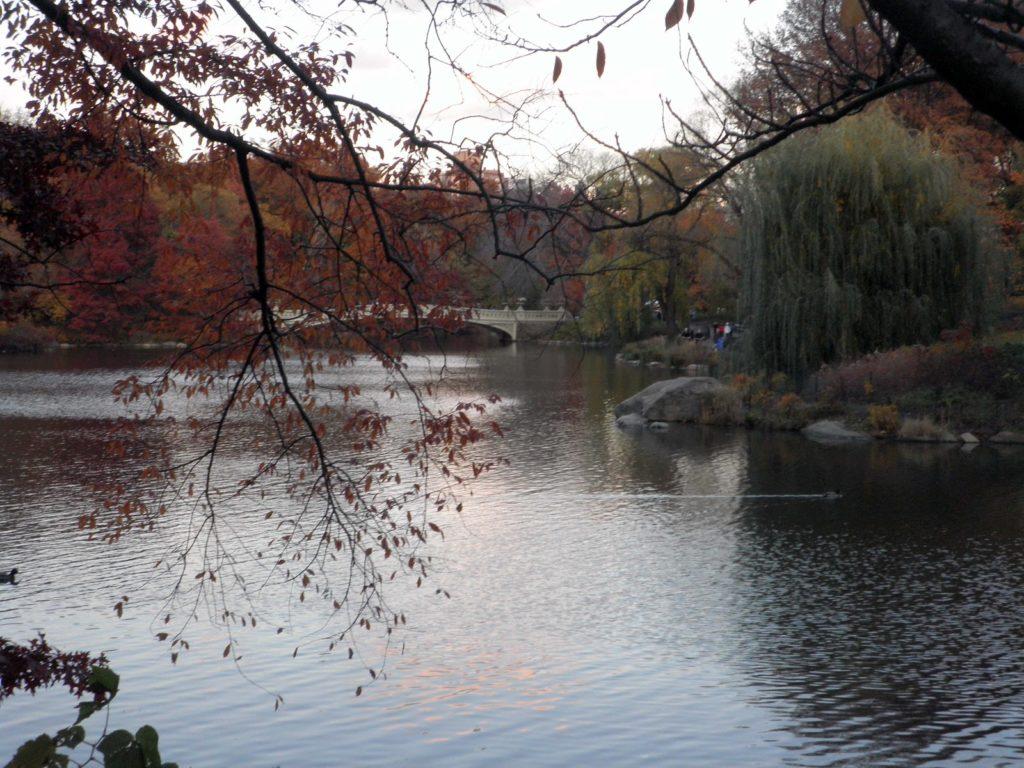 guida central park autunno