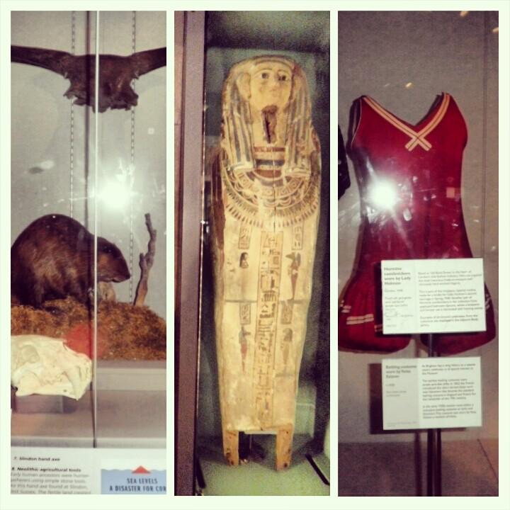 brighton museum kitsch