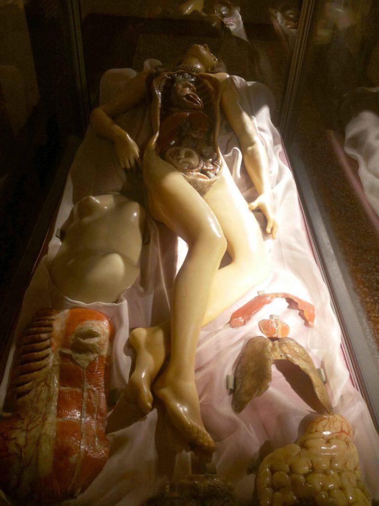 museo palazzo poggi bologna