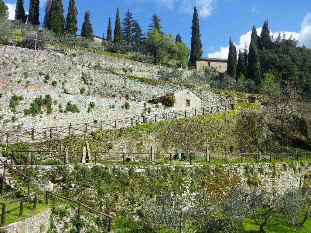 il sentiero di accesso tra i terrazzamenti con gli olivi