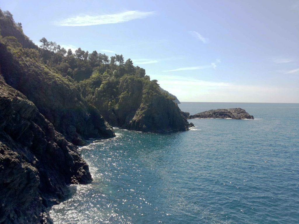 scogliera con macchia mediterranea a picco sul mare, sulla costa della liguria