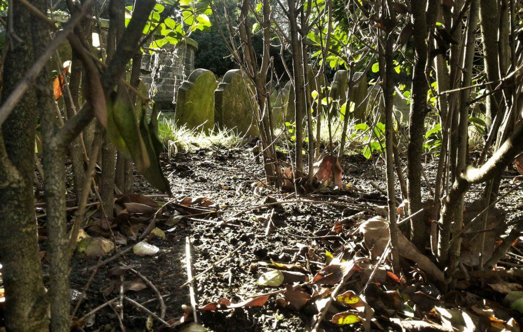 cimitero degli animali hyde park
