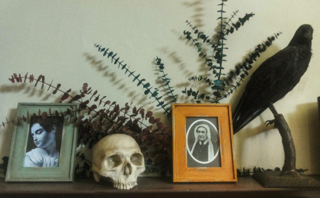 fotografie, teschio e un corvo impagliato nella casa museo di Poe