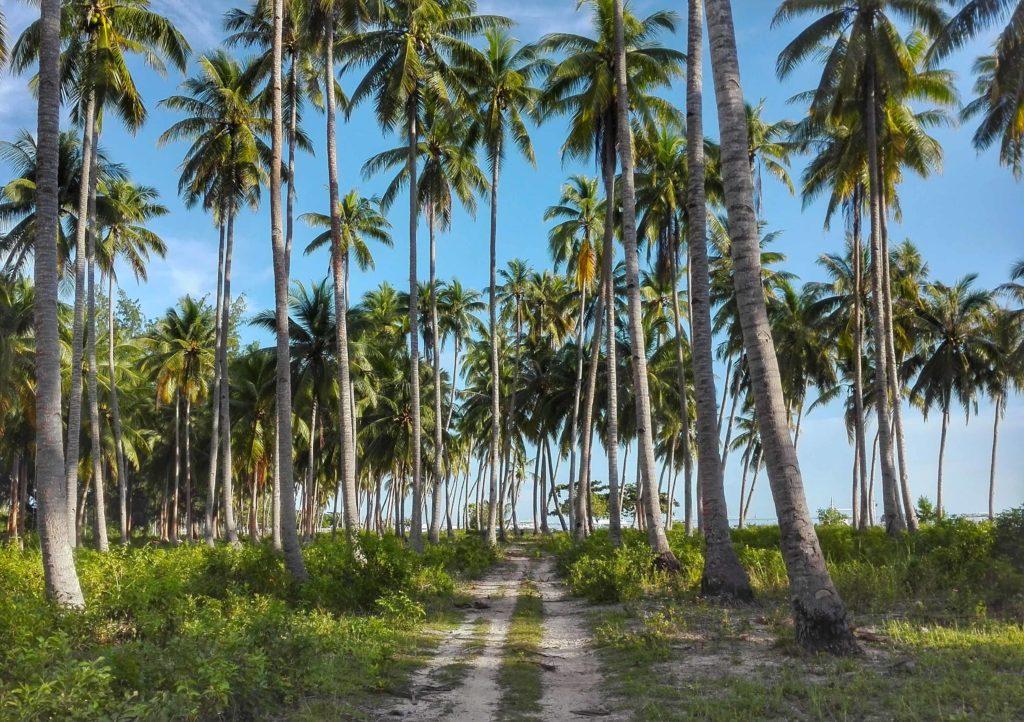 viaggio nelle filippine mare