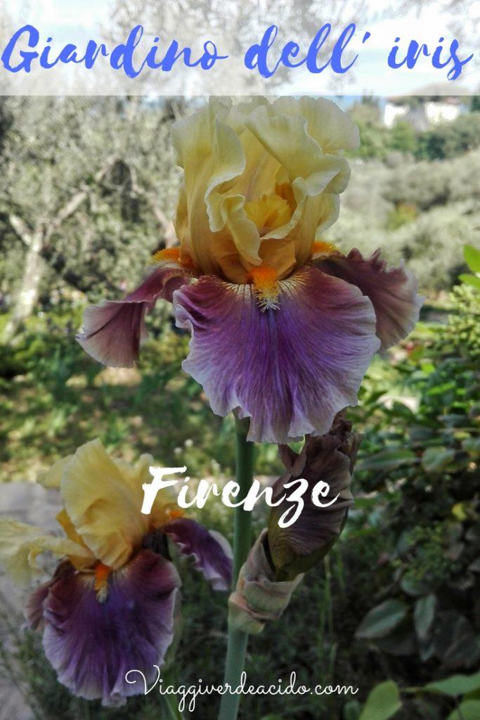 firenze giardino dell'iris