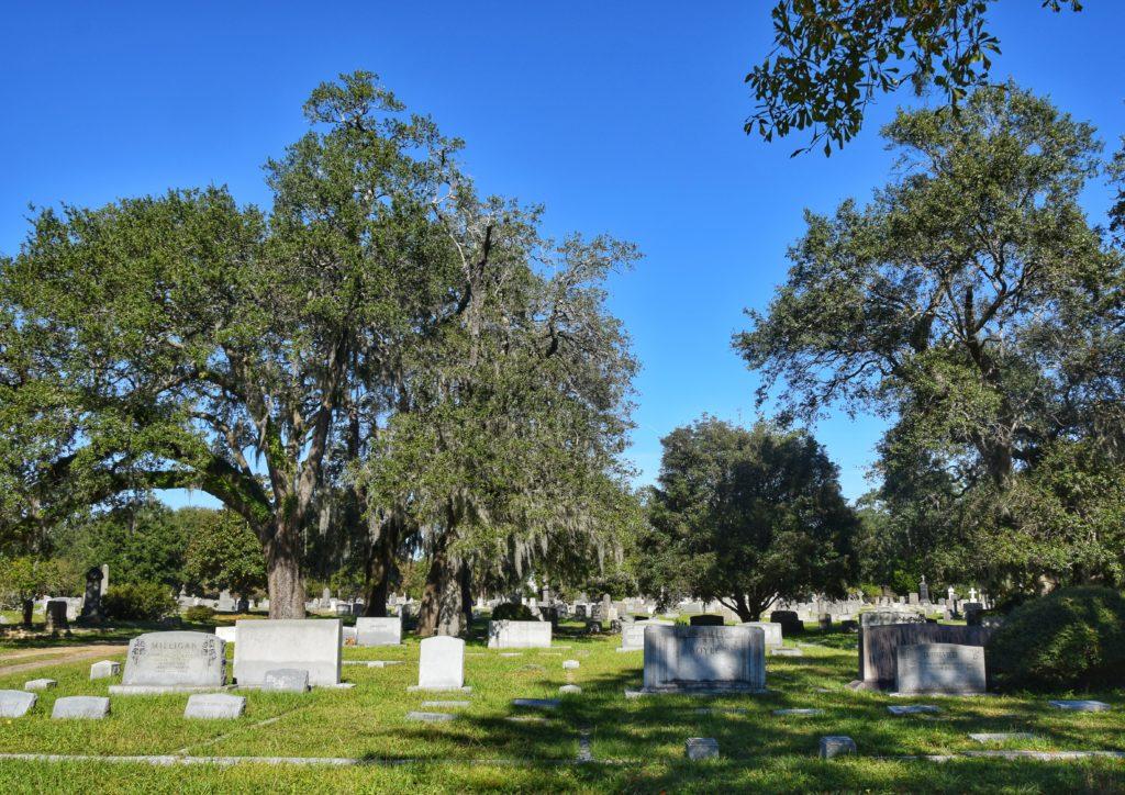 magnolia cemetery charleston